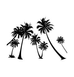 icon palm tree silhuoette vector image