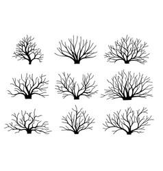 image bushes without leaves set autumn vector image