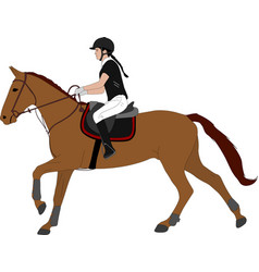 Young woman riding horsecolor equestrian sport vector
