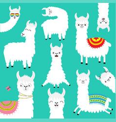 Alpaca llama big set childish baby collection vector