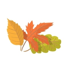 Autumn leaves cartoon icon vector