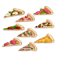 set different tasty slices fresh italian vector image