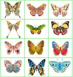 set of decorative butterflies vector image