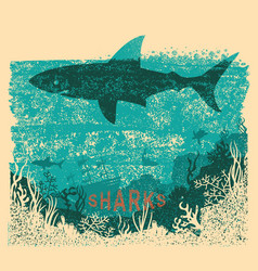 Shark swimming in sea on old paper poster vector