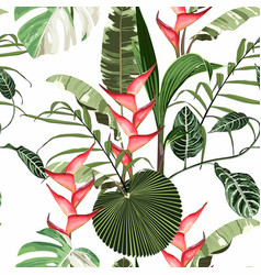 tropical red flowers seamless pattern vector image