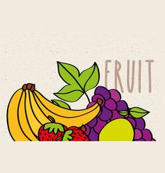bananas strawberry grapes and lemon fruit banner vector image