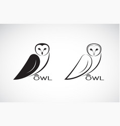 an owl design on white background bird wild vector image