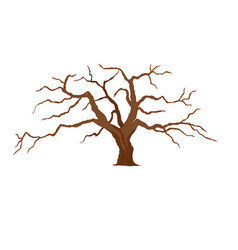 a tree without leaves vector image