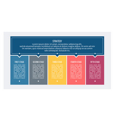 business process chart with 5 steps options vector image