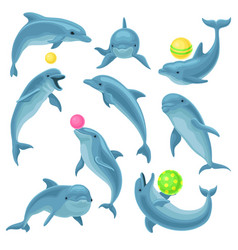 cute blue dolphins set dolphin jumping and vector image