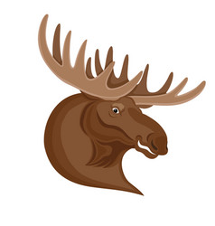 Moose with beautiful horns vector