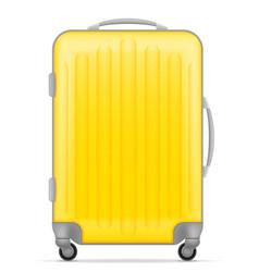 plastic travel bag vector image