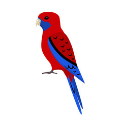 Rosella parrot icon in flat style vector
