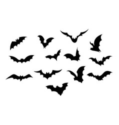 set bats collection bats flying bats vector image