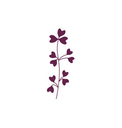 violet branch of leaves isolated on white vector image