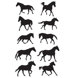 set of black trotting horses silouettes vector image vector image