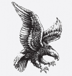 swooping eagle vector image vector image