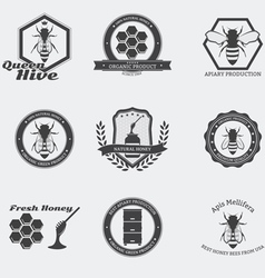 Bees emblems vector image vector image