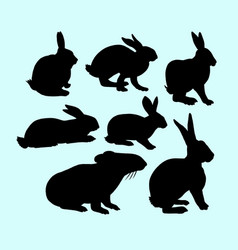 rabbit pet animal action silhouette vector image