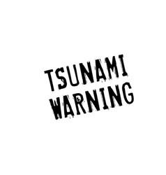 tsunami warning rubber stamp vector image