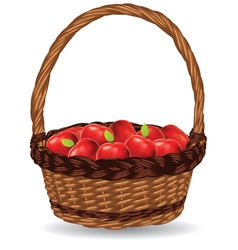 Basket of Red Apples3 vector image