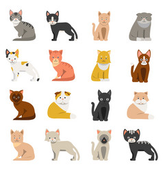 Funny cats in flat style isolate on white vector