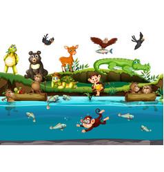 Many animals river vector