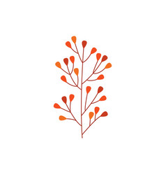 orange autumn branch of leaves isolated on white vector image