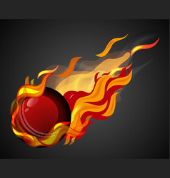 shooting cricket with flame on black background vector image