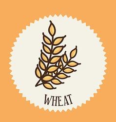 wheat design vector image