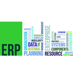 word cloud erp vector image