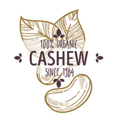 100 percent organic cashew nut label with leaves vector image