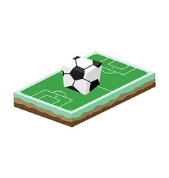 cartoon soccer field vector image