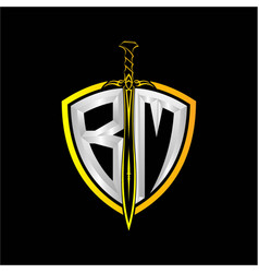 Initials b m is a shield decorated vector