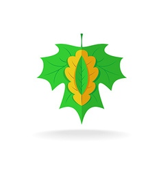 Maple oak and ash tree leaves logo vector