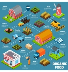 Organic food isometric flowchart vector