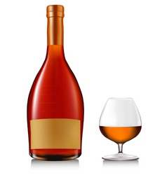 bottle of brandy with glass vector image vector image