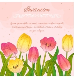 Floral card with tulips on pink background vector image vector image