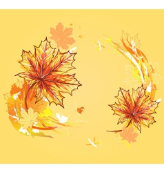 autumn maple leafs vector image vector image
