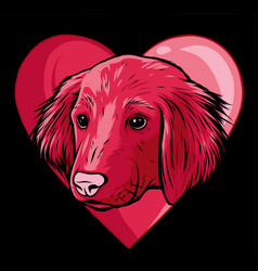 a dog in love shape or mascot vector image