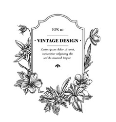 Badge design with black and white edelweiss vector