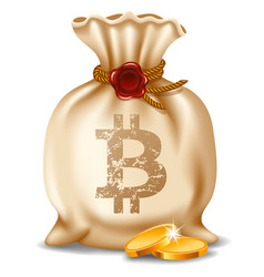 bitcoin in the bag vector image
