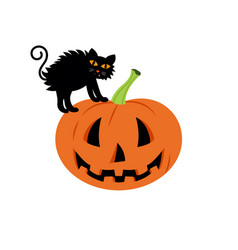 black cat in a halloween pumpkin background is vector image