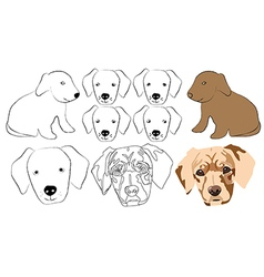 Head of the dog vector image