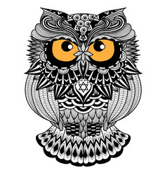 Owl design vector