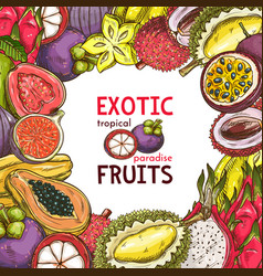 Sketch poster of fruit shop exotic fruits vector