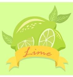 Lime Fruit Banner vector image vector image