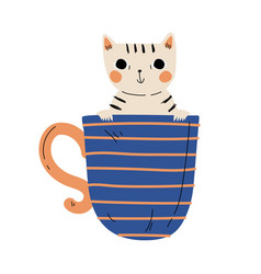 Cute kitten in blue teacup adorable little cat vector