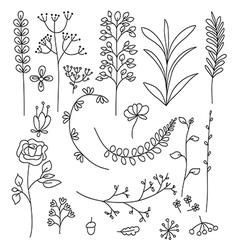 Doodle of floral elements vector image