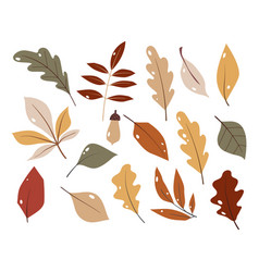 forest leaf hand drawn set colorful vector image